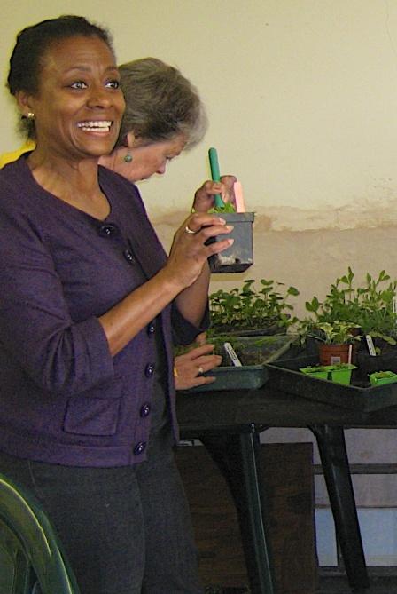 Seedling Exchange 2012