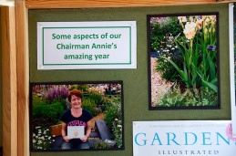 Part of a display illustrating Anne Godfrey's outstanding 2012