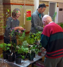 Sue Jaye & Steve Dudley on the plant stall