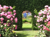 Bradenham Hall Gardens
