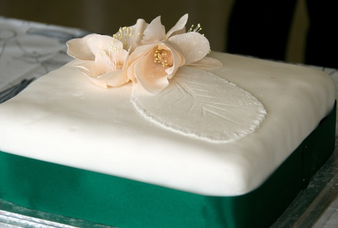 A fantastic cake from Janet Horton, decorated with an HPS hellebore topping