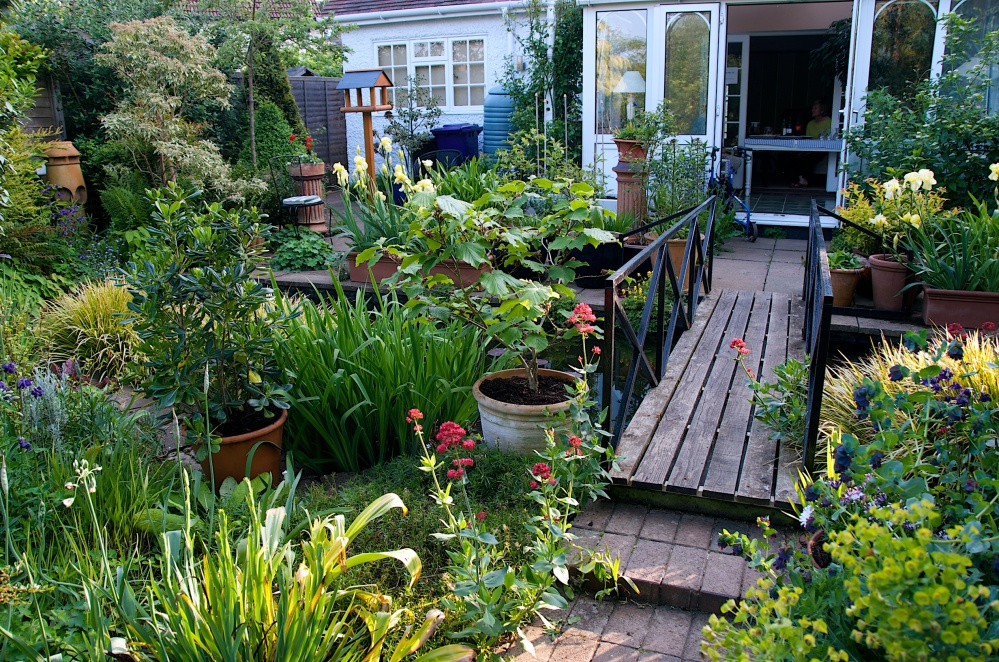 Open Garden in Letchworth, Renata Hume, HHPS and NGS (2/6)