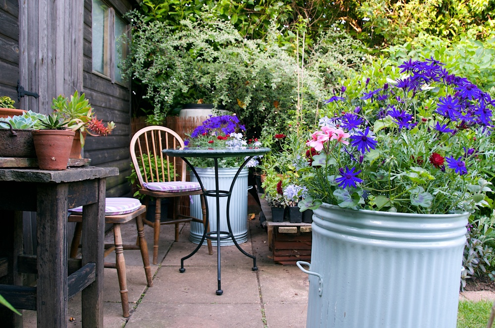 Open Garden in Letchworth, Renata Hume, HHPS and NGS (5/6)