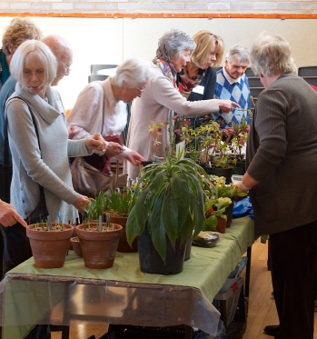 Eager Punters at our Plant Stall