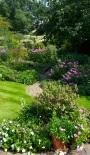 Member Open Gardens