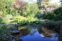 Member Open Garden : HeatherOsborne