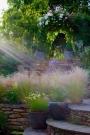 Member Open Garden – 84 Valley Road,Again