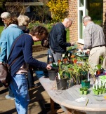 Seedling Swap 2015