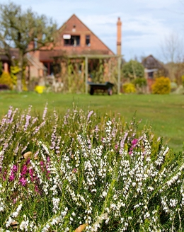 Diana Garner's Garden